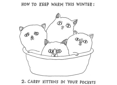 carry kittens in your pocket