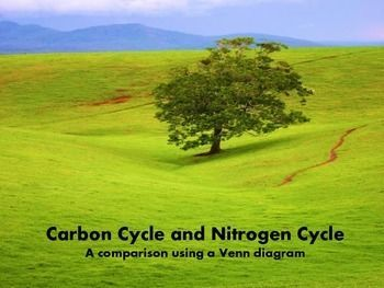 Carbon cycle vs nitrogen cycle venn diagrams cycling and a review of two biogeochemical cycles students draw a double venn diagram and place the ccuart Choice Image
