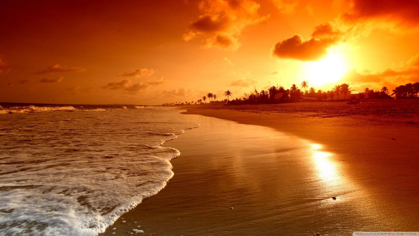 Pin by jos oliveira on golden pinterest beach sunrise and sunset sunset voltagebd Choice Image