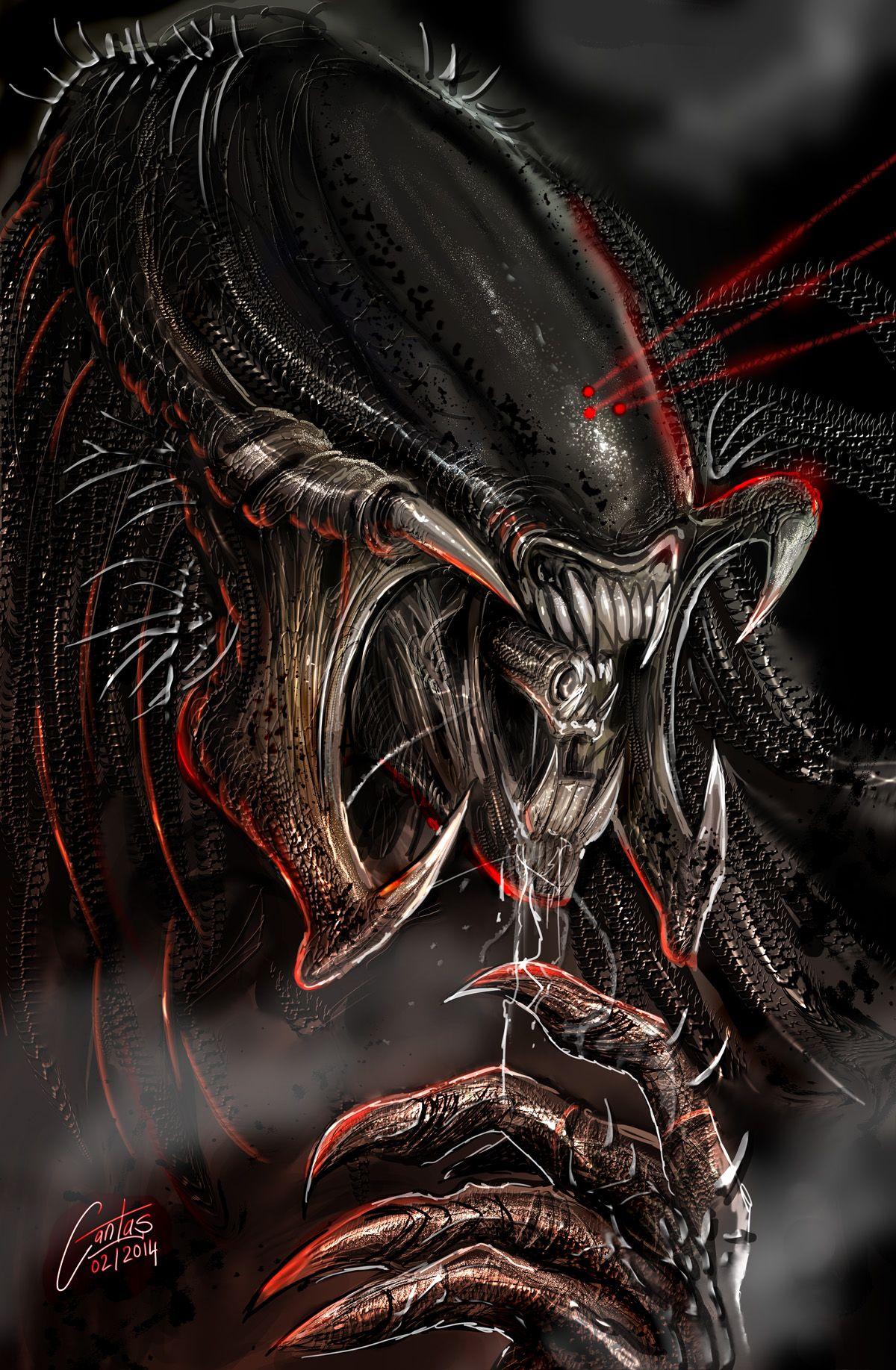predalien out of this world pinterest predator alien alien vs