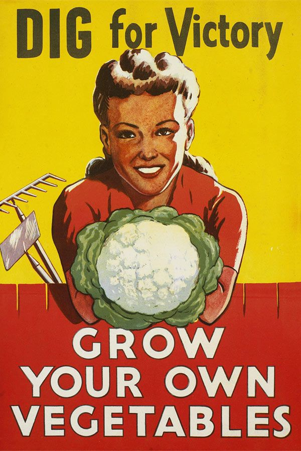 """British Garden Victory Poster. I think this is propaganda written by the deer in my neighborhood. They like my """"own vegetables"""" anyway."""