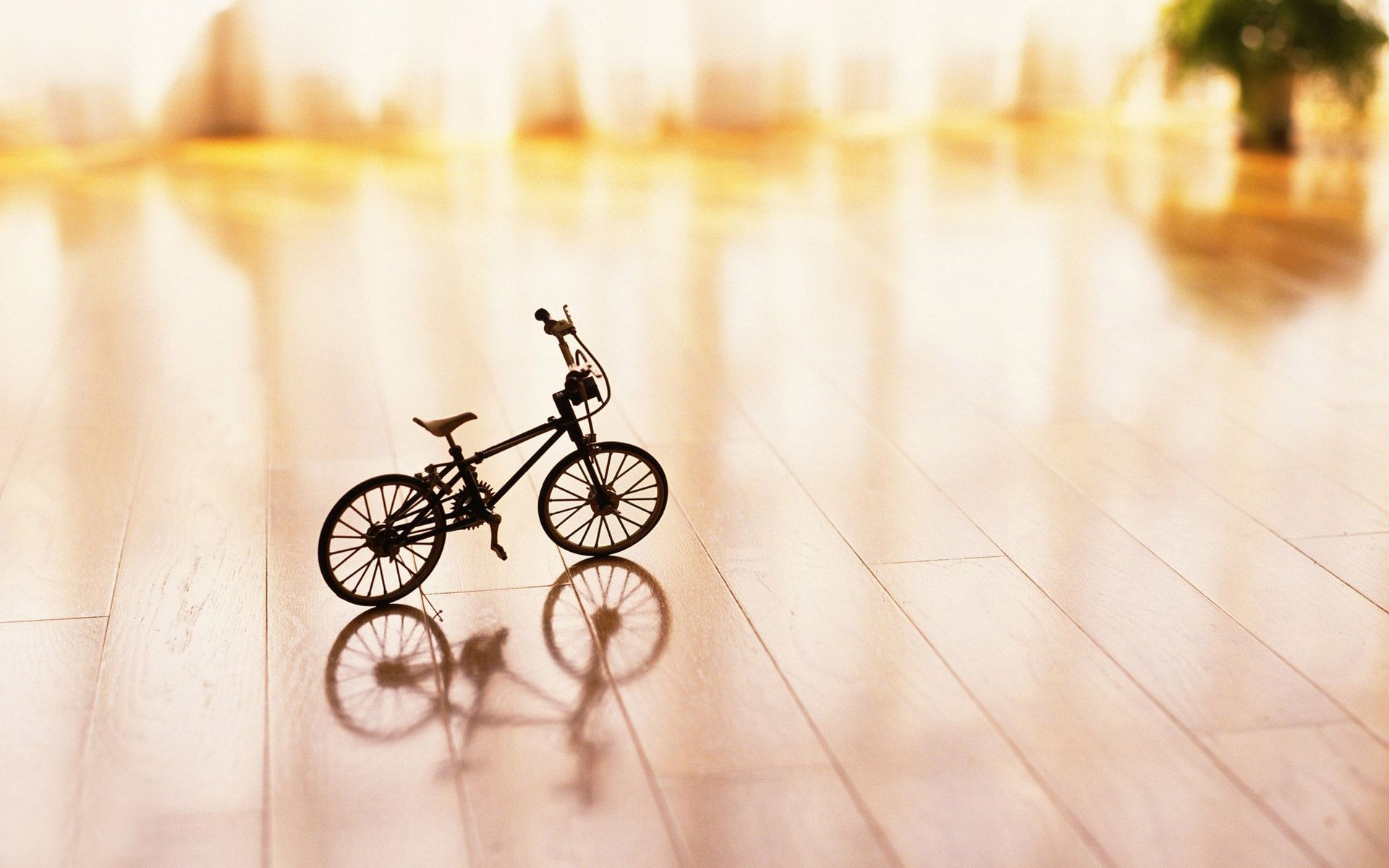 Bicycles Hd Wallpapers Wallpaper Hd Wallpaper Latest Wallpapers