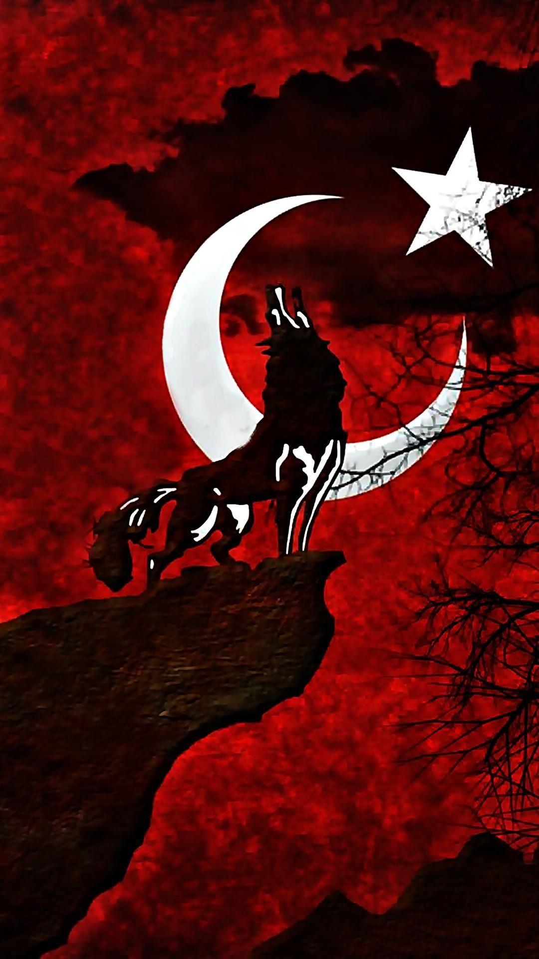 Turkey flag wolf jj pinterest turkey flag wolf voltagebd Images