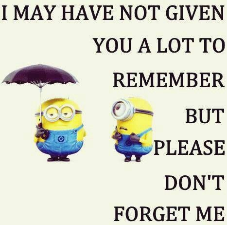 Dont Forget Me Minion Quotes Pinterest Minions Quotes Minion