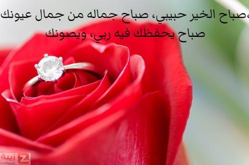 صور صباح الحب والاشتياق صباح الحب والشوق صباح الحب حبيبتي Zina Blog