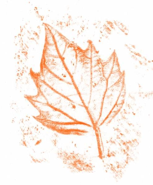 Empreintes de feuilles | Feuille arbre, Art d'automne et ...