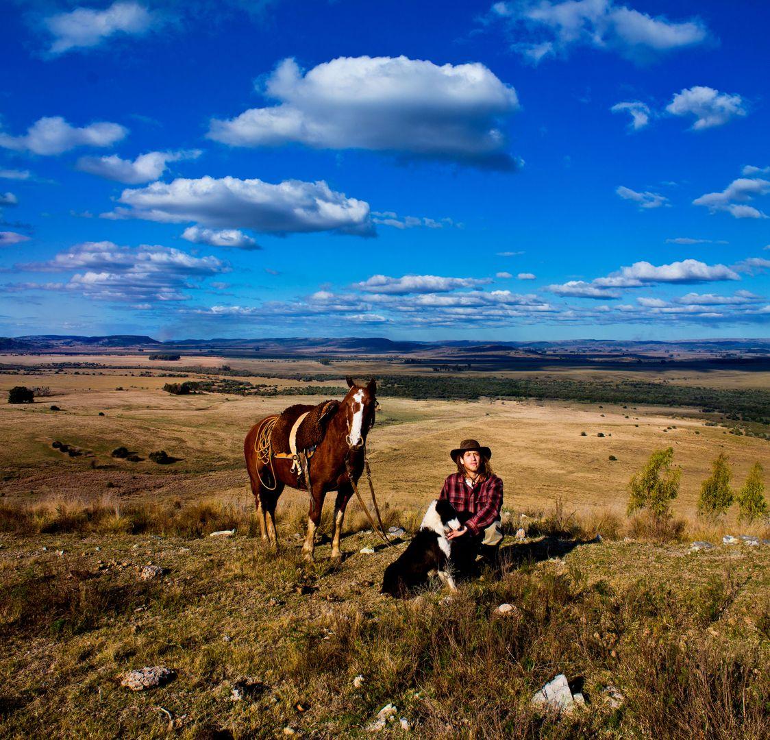 Travel, gaucho, estancia, sheep dog