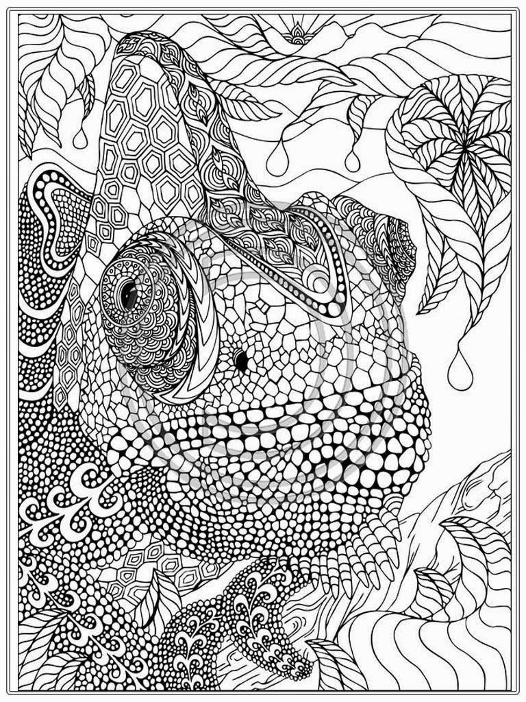 Printable coloring pages with animals - Printable Iguana Adult Coloring Pages Realistic Coloring Pages