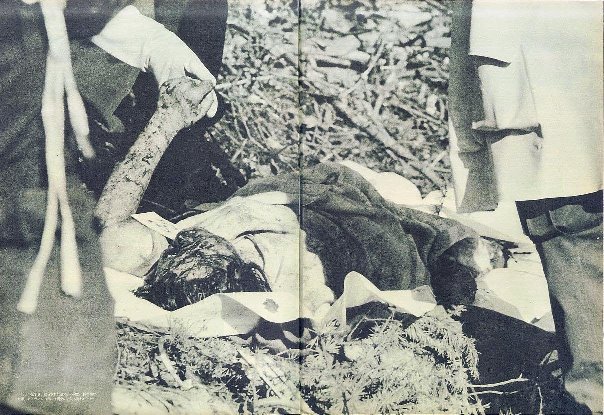 の 123 事故 日航 便 墜落 真相 機