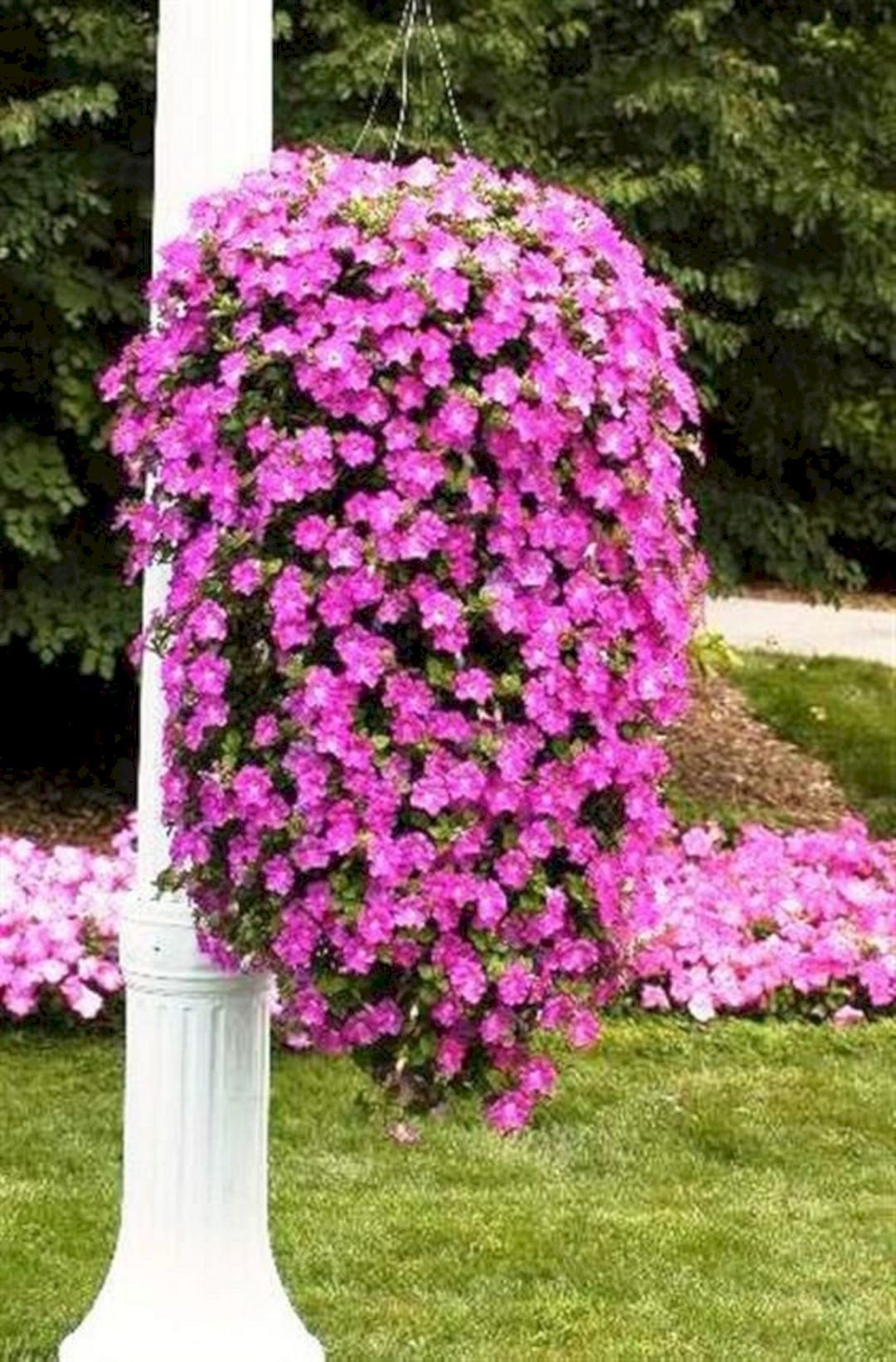 Composizione Vasi Da Balcone 30 beautiful cascading planter ideas that will enhance your