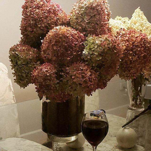 My Limelight Hydrangeas Are Turning Pink They Do This At The End Of The Season Notice The Size Of The Wine Glass To Get Limelight Hydrangea Bloom Hydrangea