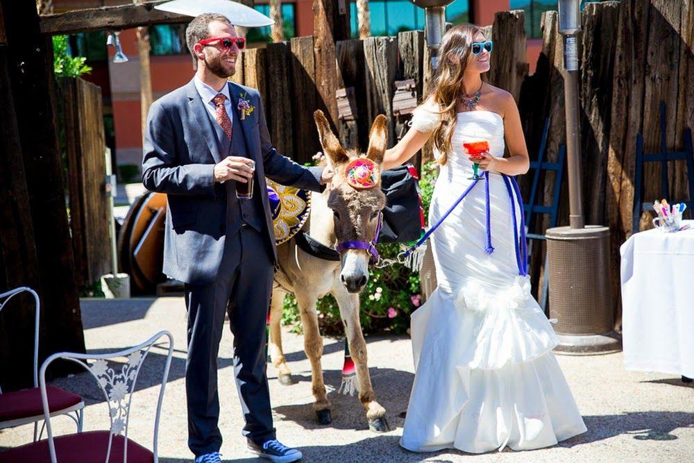 beer burro, beer donkey