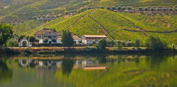 Douron viinitilat Portugalissa