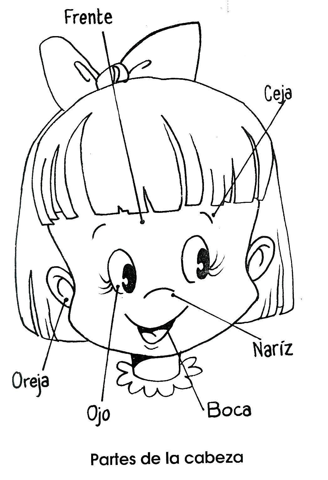 Aprender a dibujar y pintar - Dibujos para colorear -   Com dibuixar ...