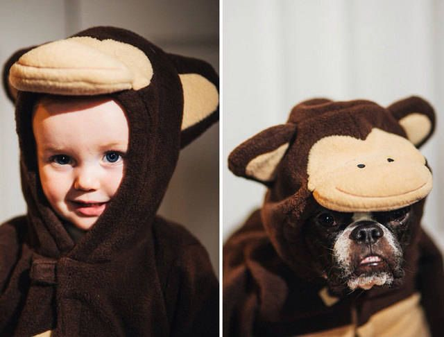 รูปภาพสุดน่ารักของน้องหมาและเด็กน้อย (づ ̄ ³ ̄)づ รูปที่ 14