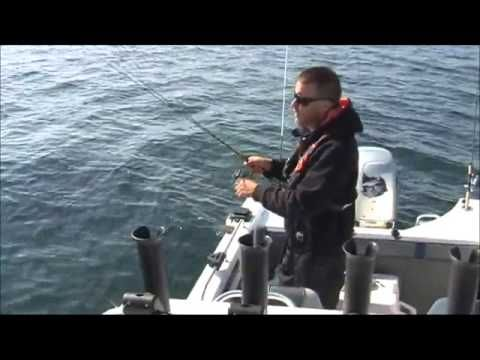 Savage Gear Saltwater Sandeel Lures - YouTube