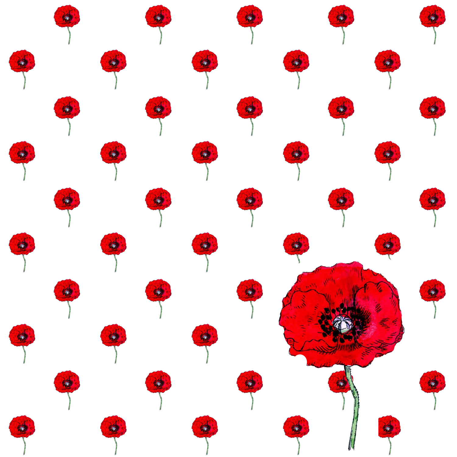 Red Poppy: free digital poppy scrapbooking paper and wrapping paper ...