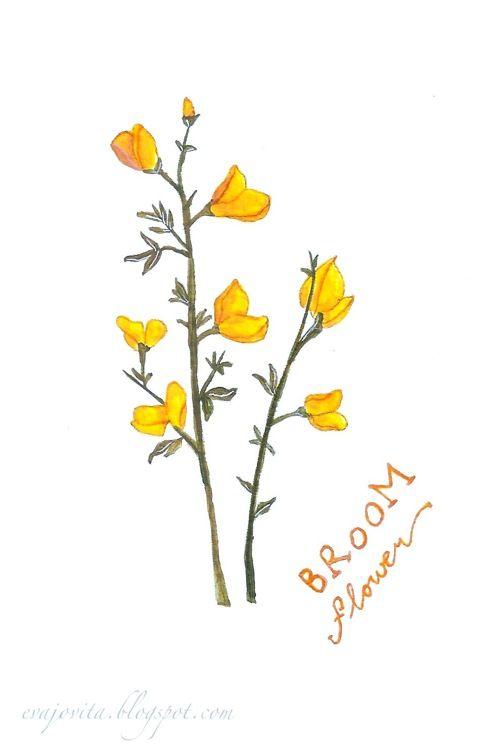 Broom Flower Flower Illustration Paisley Tattoos Body Art Tattoos