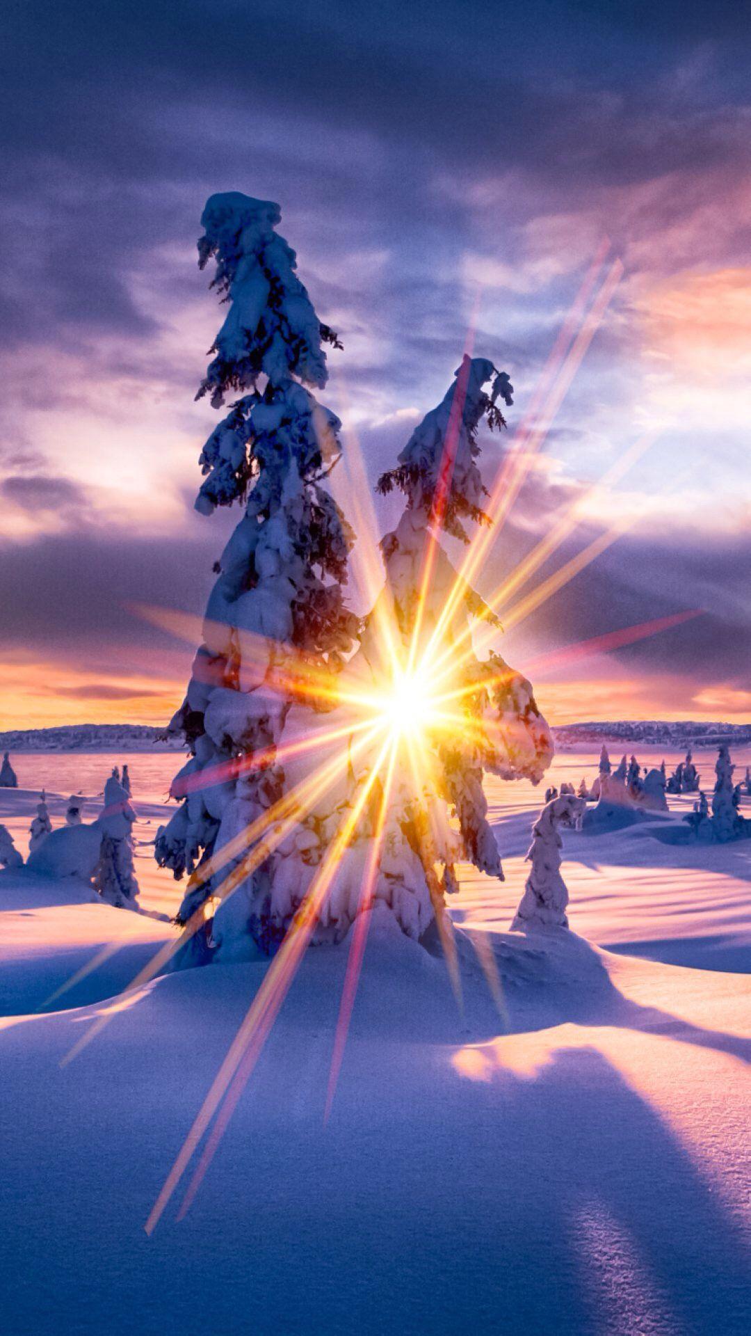 Pin by Jordinly Renee on Majestic Winter scenes, Snowy