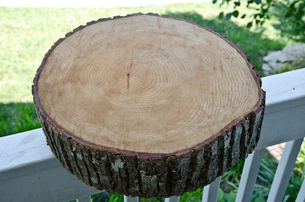 Perfect Rustic Wood Slab From Tree Slice From Tree Trunk   Perfect For Wedding Cake  Base Or
