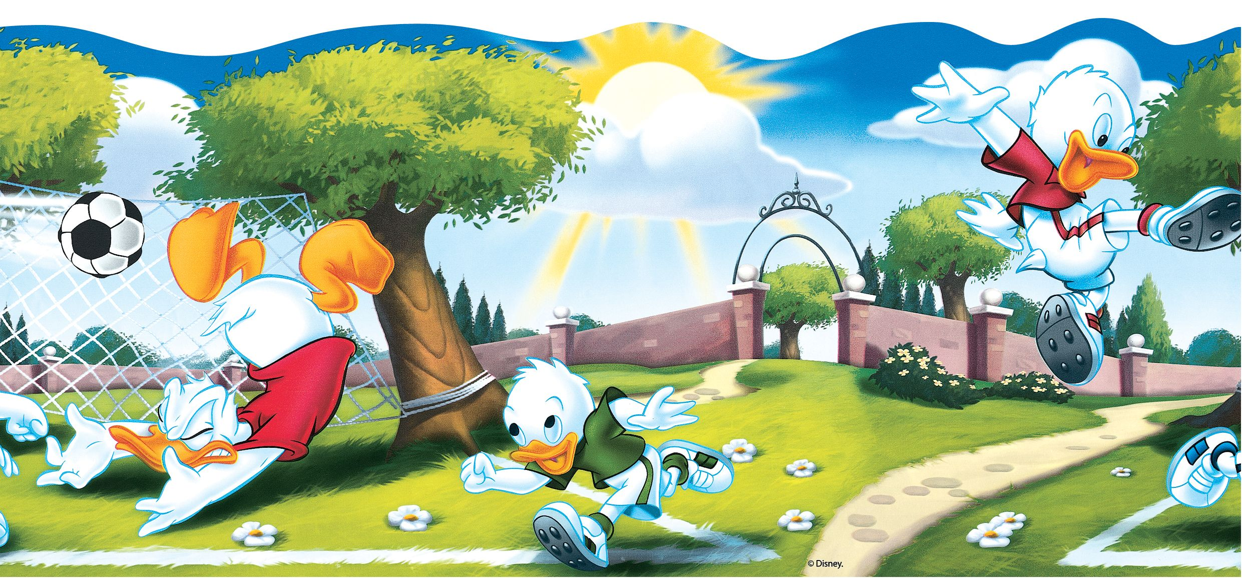 Donald Duck High Quality HD Wallpapers