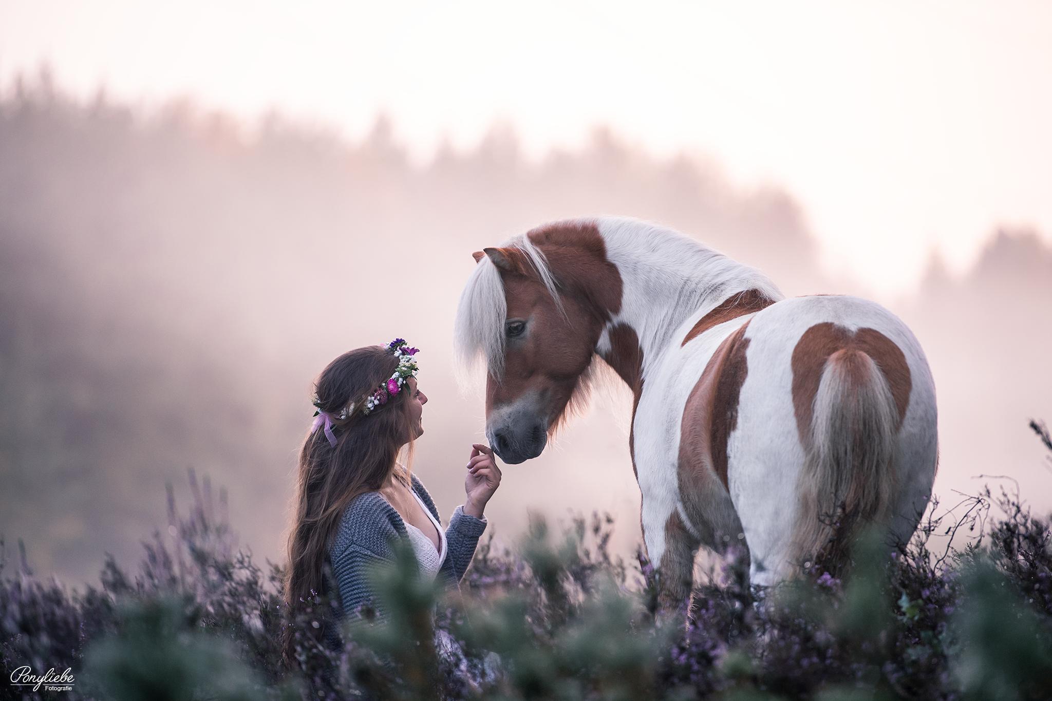 ponyliebe at its best  pferde fotografie pferde mädchen