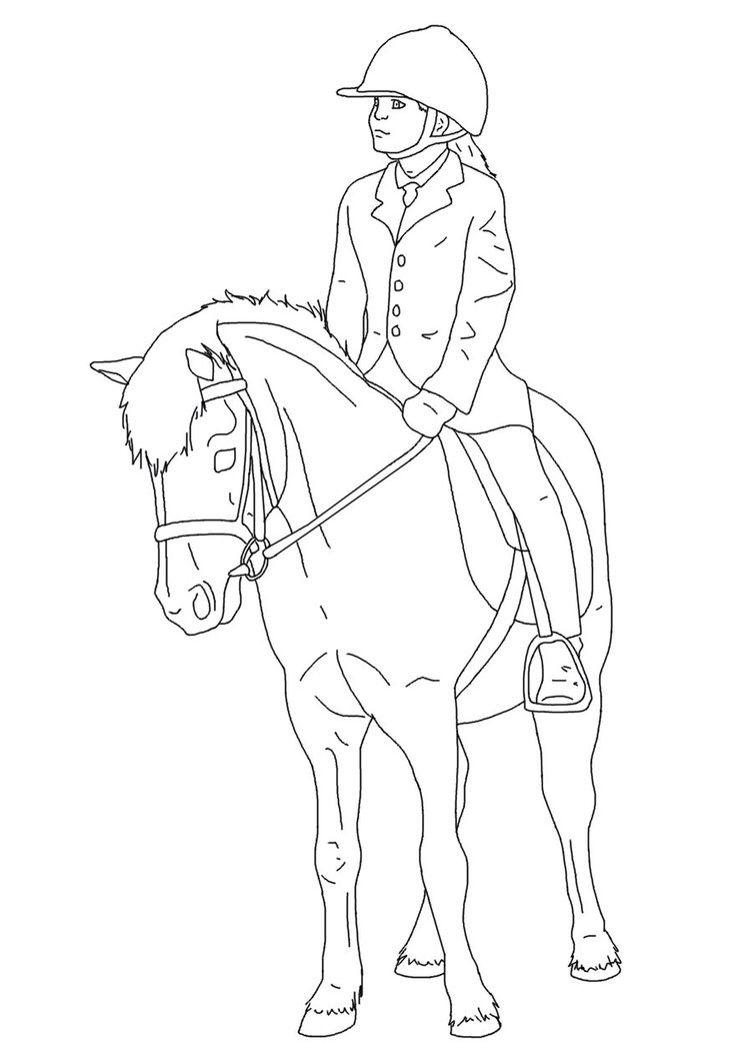 dressur ausmalbilder pferde mit reiterin  dorothy meyer