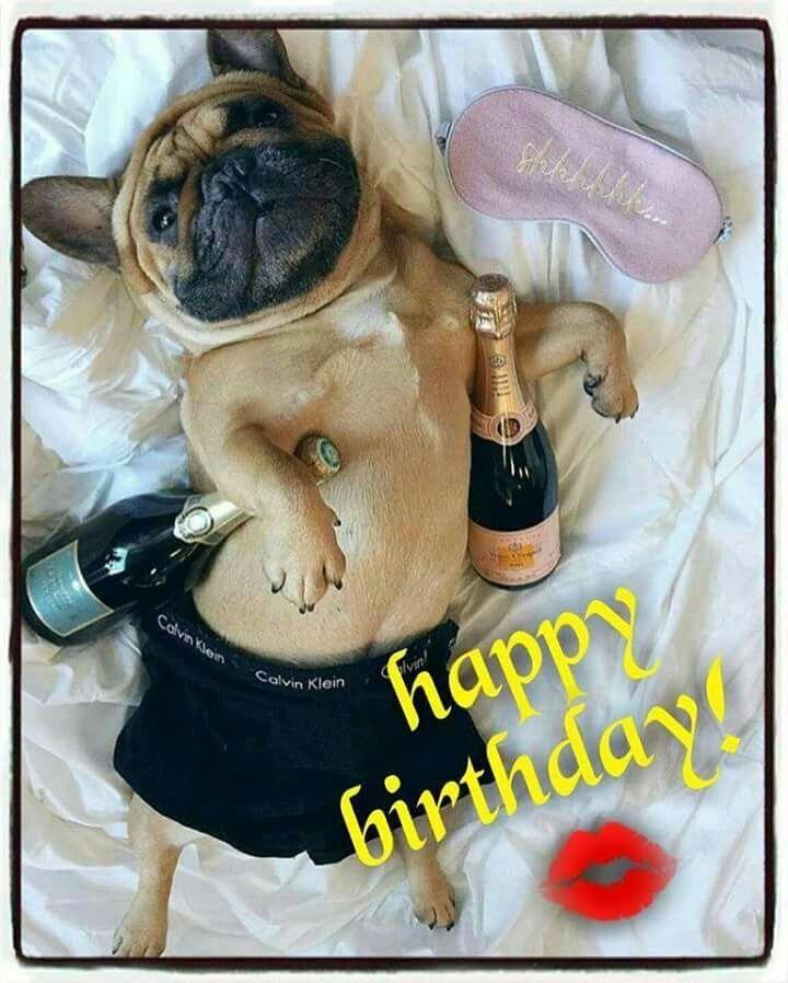 Teengirlbedroomdecoratingideas Happy Birthday French Bulldog