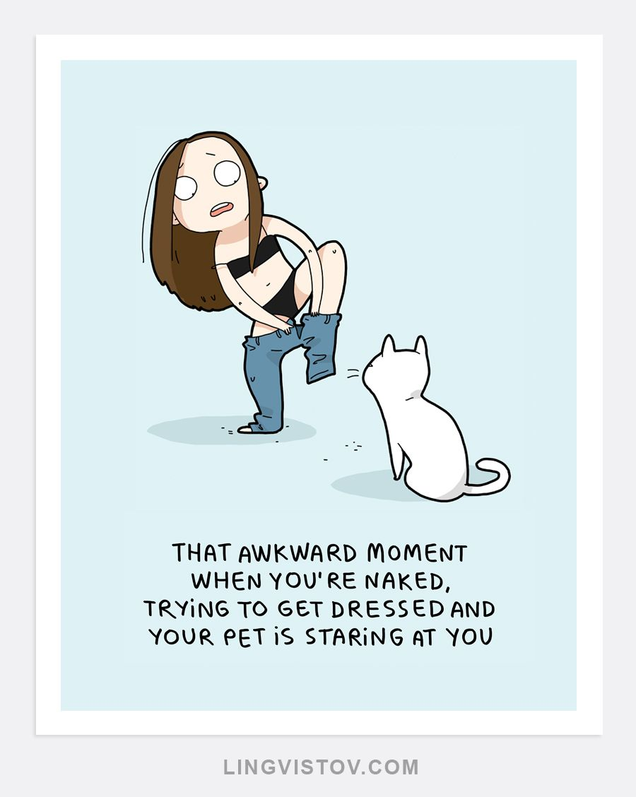 So True Cat Shirts Funny Crazy Cats Pets