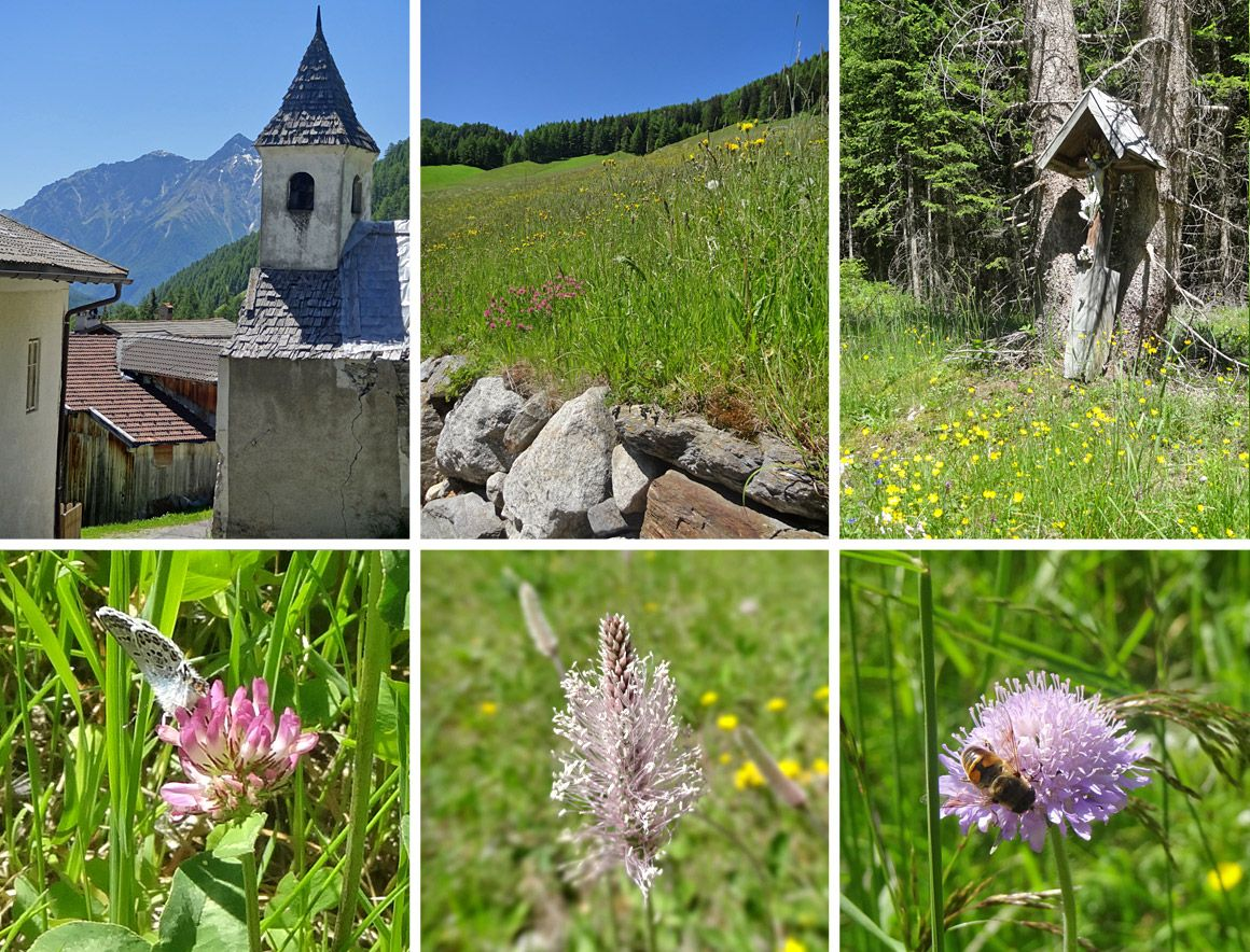 Südtirol - blühendes Italien vor St. Jakob