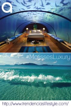 En la isla Rangali de Maldivas, hay un lujoso hotel que cuenta con habitaciones bajo el mar; descansar mientras se ven tiburones, manta rayas y delfines es posible. ¿Te gustaría pasar una noche en este hotel?