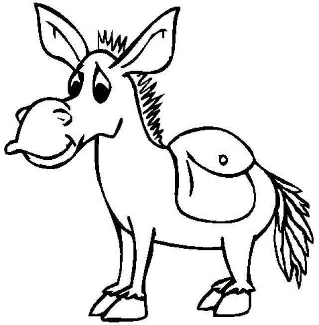small donkeys the dashing