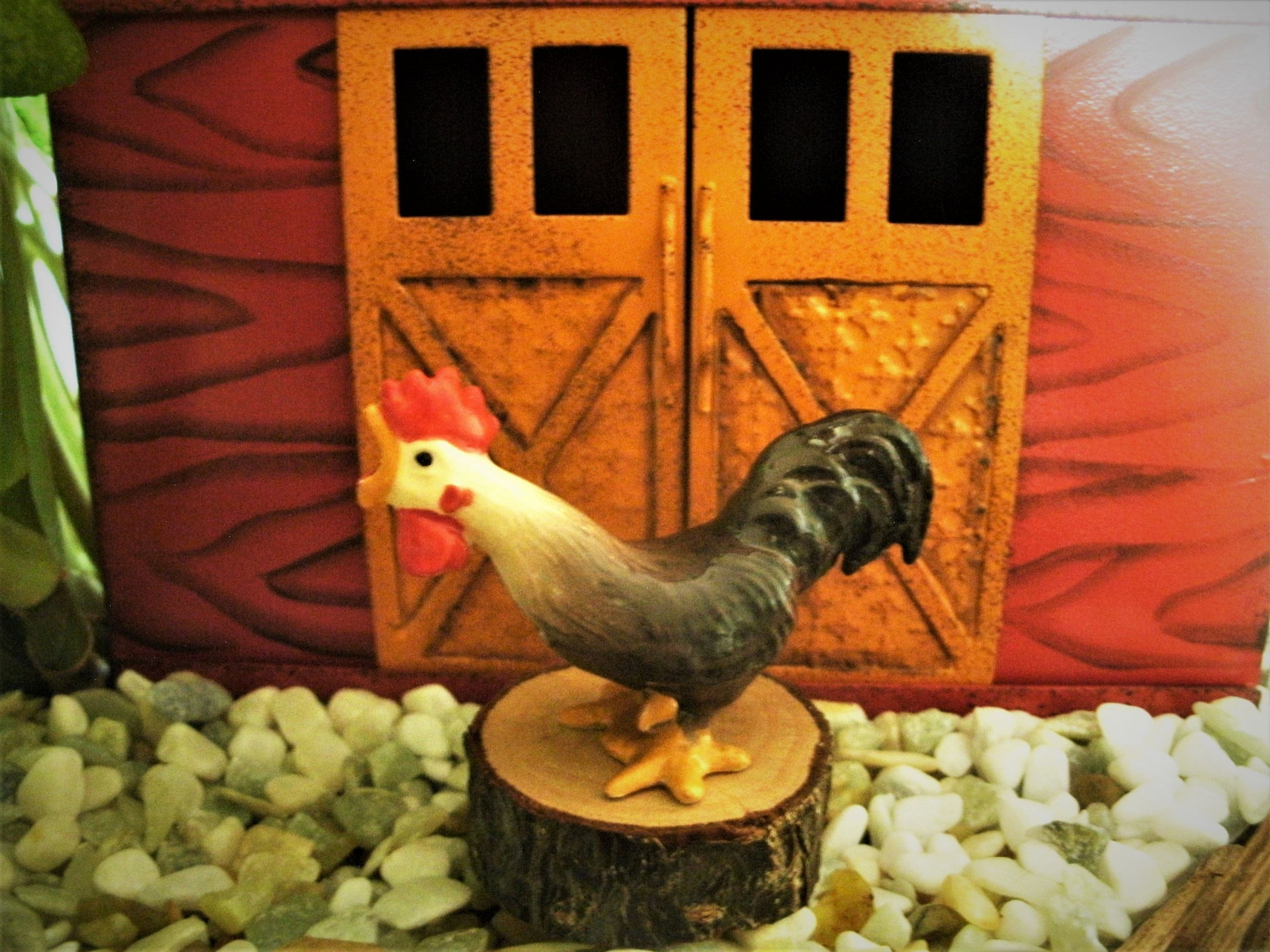 7 Chickens And Roosters Farm Animals Il Fullxfull Ihv0 In