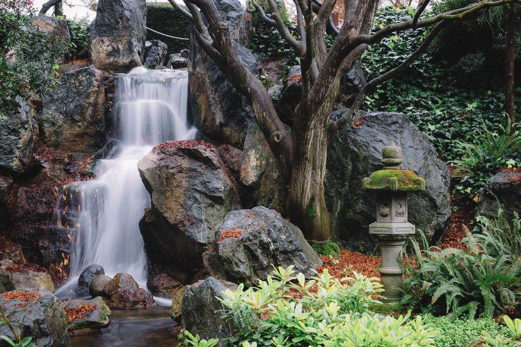 Japanese friendship garden San diego Tripomizer Trip