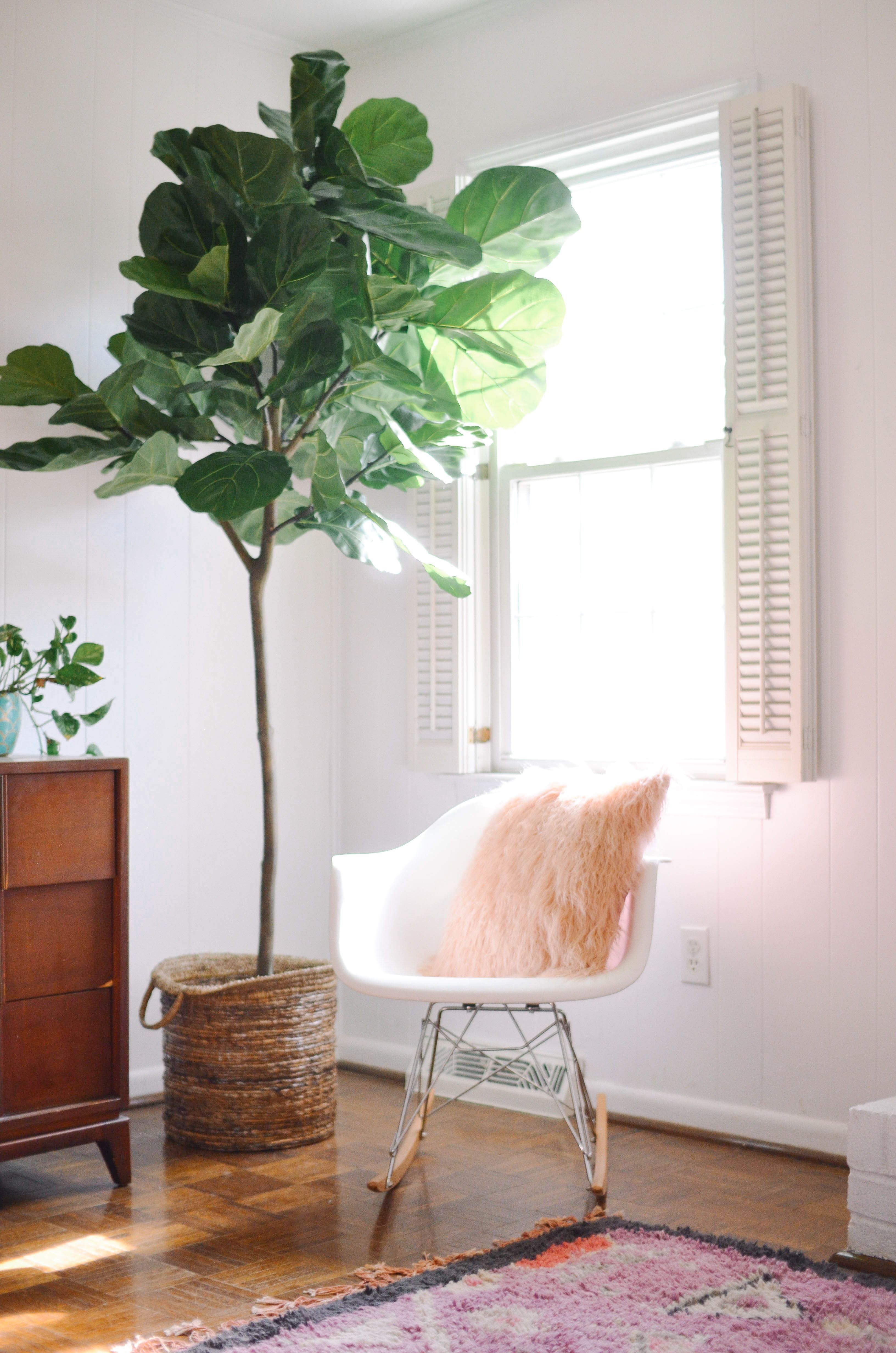 artificial house plants living room air conditioner for the most convincing faux fiddle leaf tree out fake it til you make where to shop indoor