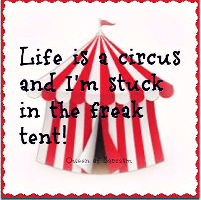 free shipping 1784d f8b16 Circus Quotes and Sayings | Life is a circus and i'm stuck ...