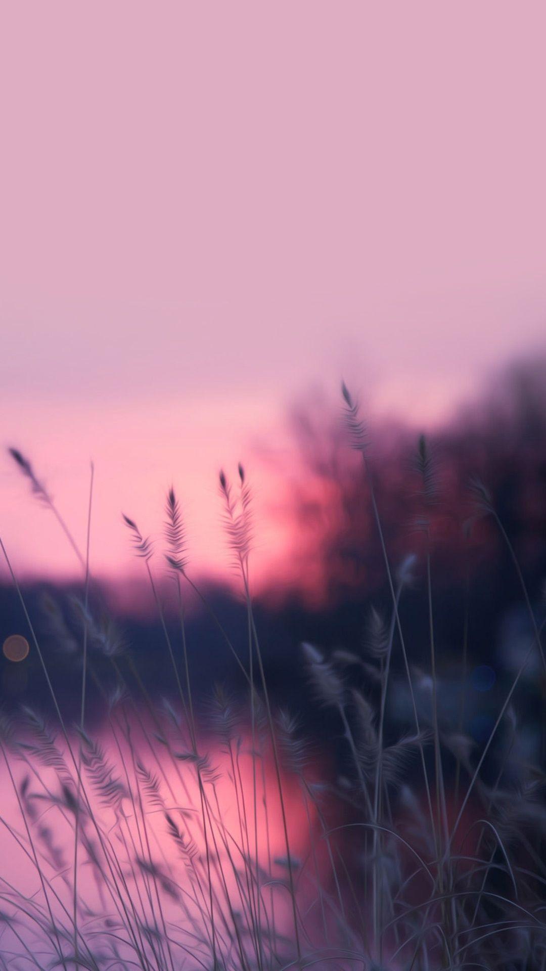 Gorgeous Pink Sunrise