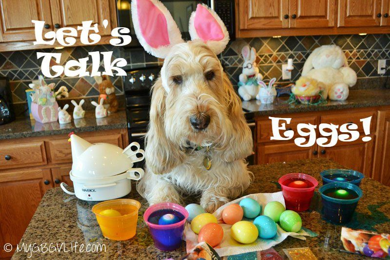 DIY Glitter Easter Eggs Mess   My GBGV Life See how two glam hounds make glitter eggs for Easter