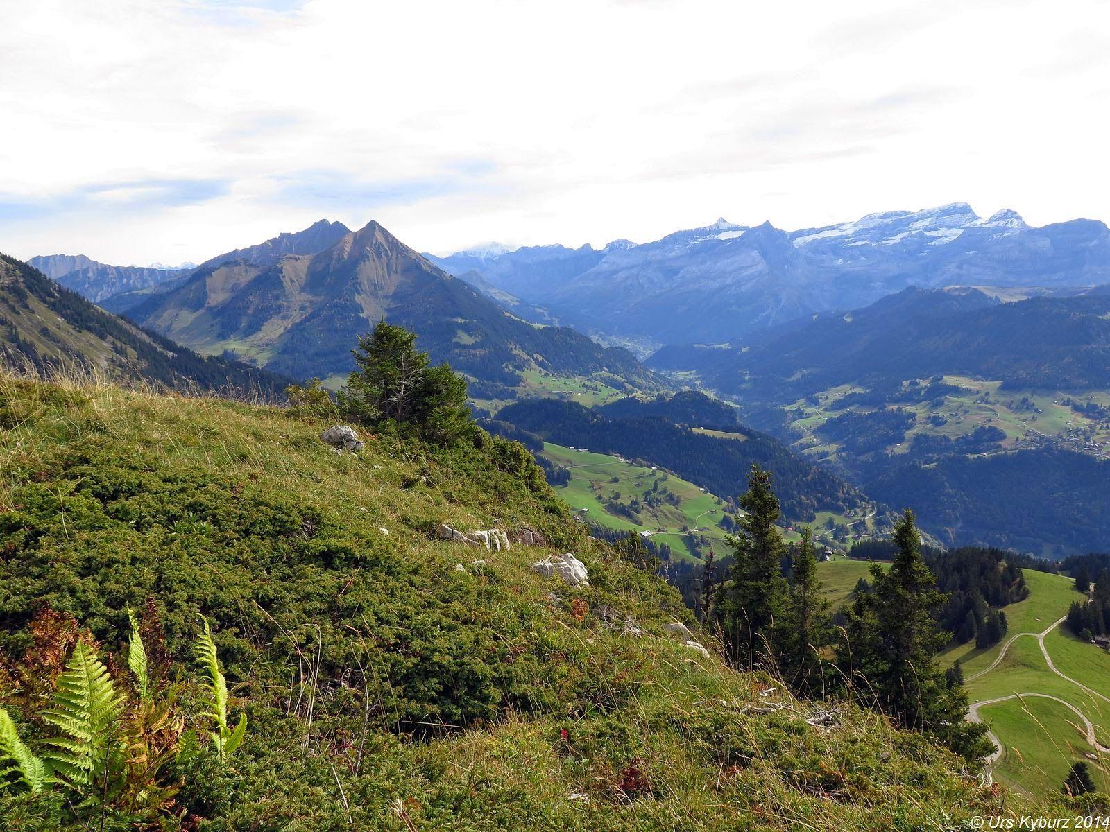 In der Natur unterwegs: Bike & Hike mit Gipfel #Leysin #hike #bike #mtb #autumnpleasure