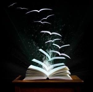 I libri sono stati i miei uccelli e i miei nidi, i miei animali domestici, la mia stalla e la mia campagna; la libreria era il mondo chiuso in uno specchio; di uno specchio aveva la profondità infinita, la varietà, l'imprevedibilità. #JeanPaulSartre