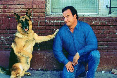 Jim Belushi Gsd Jerry Lee German Sheperd Dogs German