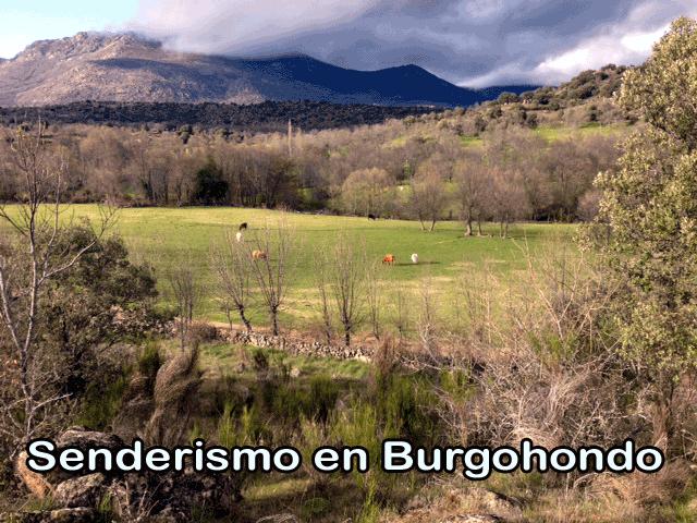 Paisajes de Burgohondo