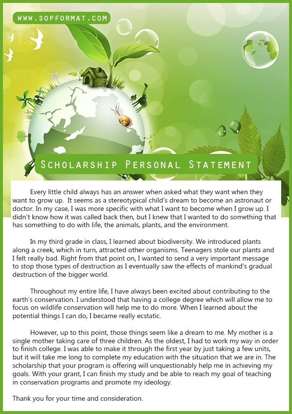 Scholarship Personal Statement Format Scholarship Personal