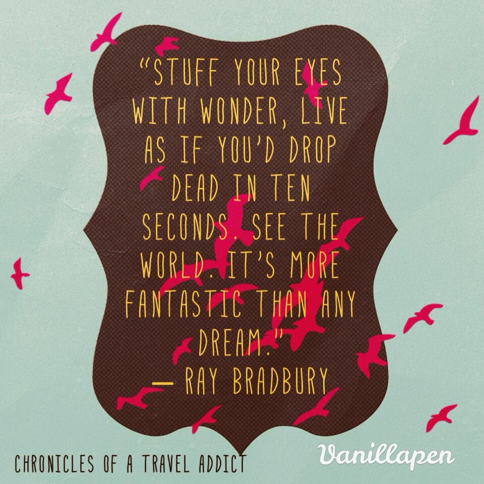 "Fahrenheit 451 Quotes Stuff Your Eyes With Wonder."" Poignant Inspirational Quote From"