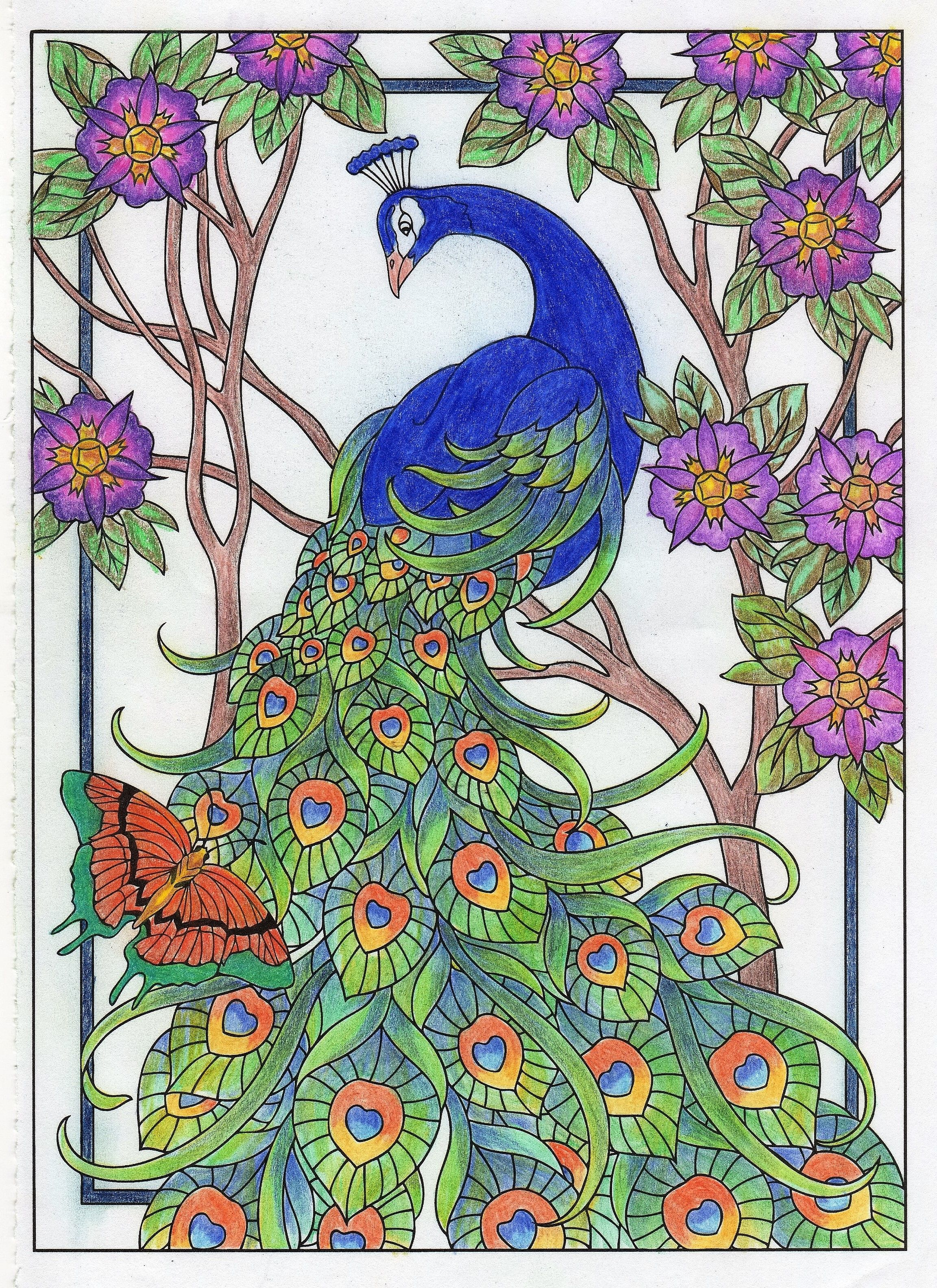 Peacock From Creative Haven Peacock Designs Coloring Book