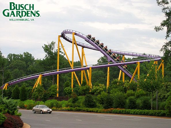 17 Best 1000 images about Busch Gardens on Pinterest Gardens