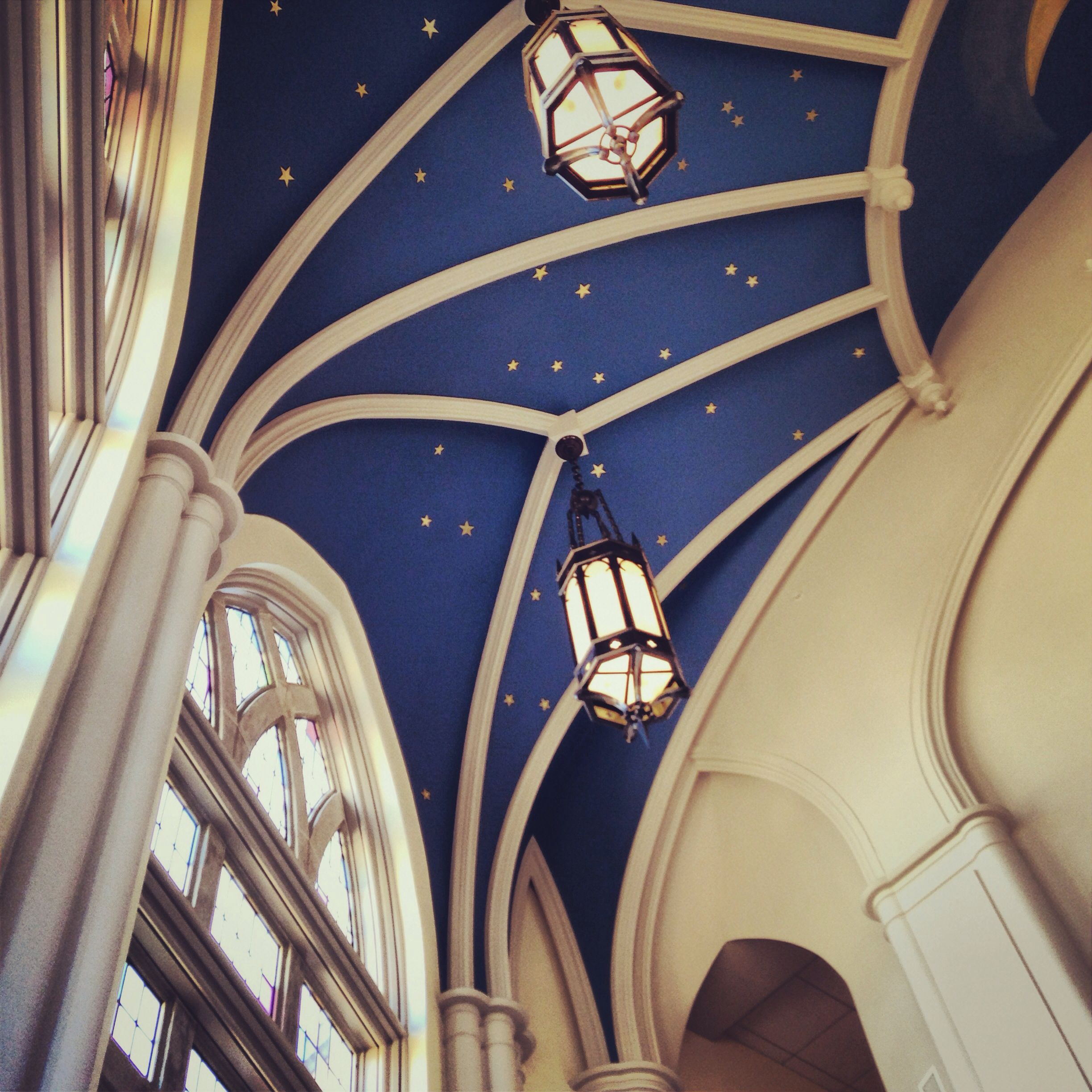 Our Library With Star Constellation Painted On The Ceiling