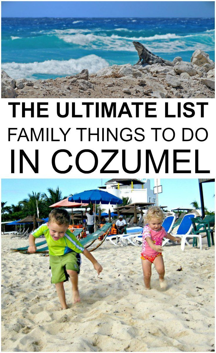 The Ultimate List Of Family Things To Do In Cozumel Cozumel