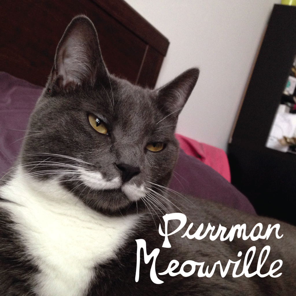 1. Purrman Meowville (With images) Funny cat jokes, Cat