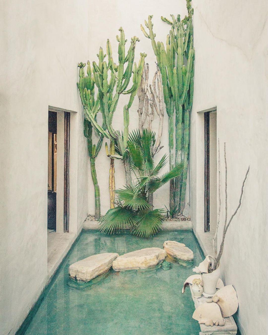 Garden Decor Los Angeles: 📍Los Angeles, US 🇺🇸 ⚡️